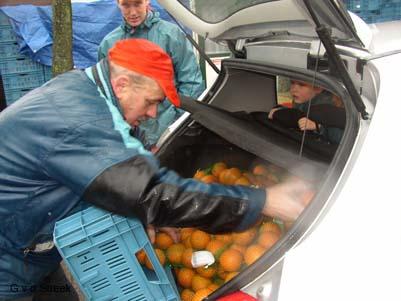 Sinaasappelactie 03-03-2007